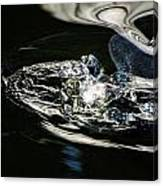 Swirling Water Canvas Print