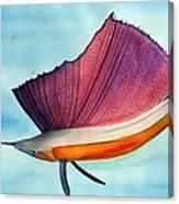 Swordfish Watercolor Of National Georgraphic Photo Canvas Print