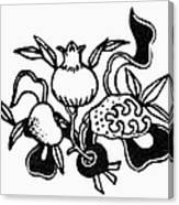 Symbol: Three Fruits Canvas Print
