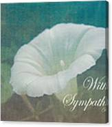 Sympathy Greeting Card - Wild Morning Glory - Bindweed Canvas Print
