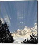 Symphonic Photography Canvas Print
