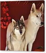 Takoda And Alaska In The Fall Canvas Print