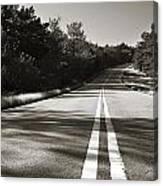 Talimena Roads II Canvas Print