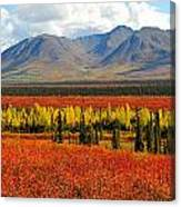 Talkeetna Mountains Moment Canvas Print