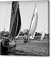Tall Ship Races 2 Canvas Print