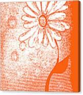 Tangerine Daisy By Shawna Erback Canvas Print
