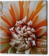 Tangerine Tinged Canvas Print
