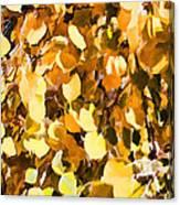 Taos Gold Iv Canvas Print