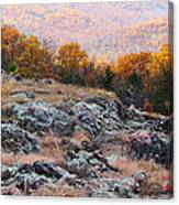 Taum Sauk Mountain Glade I Canvas Print