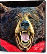 Taxidermy -  Black Bear Canvas Print