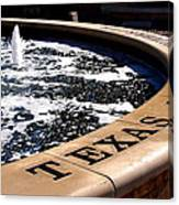 Tcu Frog Fountain Canvas Print