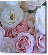 Tea Time Roses Canvas Print