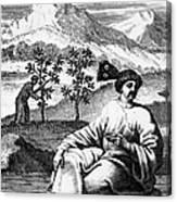 Tea: Treatise, 1687 Canvas Print
