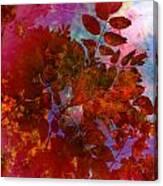 Tears Of Leaf  Canvas Print
