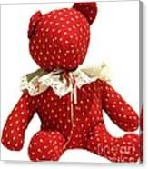 Teddy Bear Of Love Canvas Print