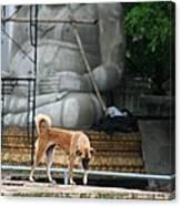 Temple Dog And Buddha Canvas Print