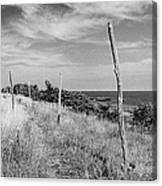 Ten-foot Poles Arild Canvas Print