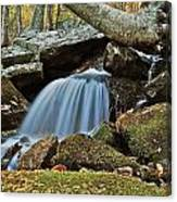Tennessee Waterfall 5962 Canvas Print