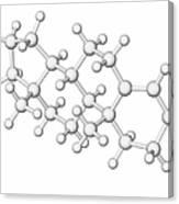 Testosterone Hormone Molecule Canvas Print