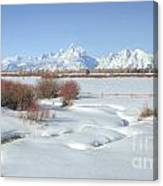 Teton Snow Canvas Print