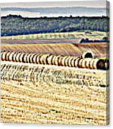Textured Fields Of France Canvas Print