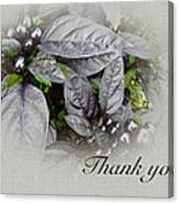Thank You Card - Silver Leaves And Berries Canvas Print