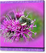 Thank You Greeting Card - Bumblebee On Ironweed Canvas Print