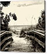The Beach Path - Clearwater Beach Canvas Print