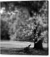 The Bench In The Park Canvas Print