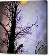 The Black Crows Canvas Print