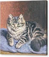 The Blue Cushion Canvas Print