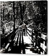 The Bridge Shadow Canvas Print