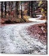 The Broken Road Canvas Print