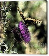 The Butterfly I Canvas Print
