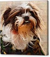 The Camo Makes The Dog Canvas Print