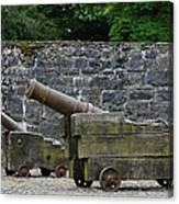 The Cannons Of Bunratty Castle Canvas Print
