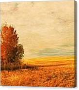 The Careful Breeze  Canvas Print