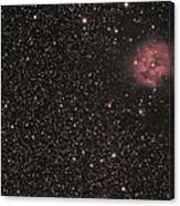 The Cocoon Nebula Canvas Print