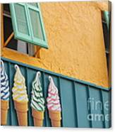 The Color Of Cones Canvas Print