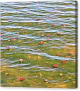 The Colors Of Lily Pads Canvas Print