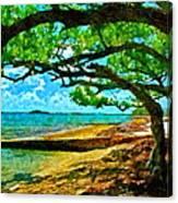 The Cove Canvas Print