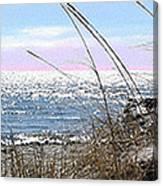 The Dennis Breeze Canvas Print