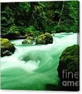 The Dosewallups River  Canvas Print