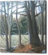 The Edge January Thaw Canvas Print