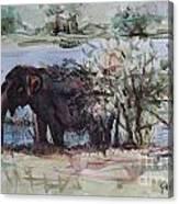 The Elelphant Canvas Print