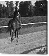 The Equestrian Trainer Canvas Print