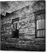 The Facade  Canvas Print