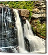 The Face Of The Falls Canvas Print