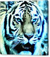 The Fierce Tiger Canvas Print