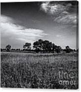 The First Homestead In Black And White Canvas Print